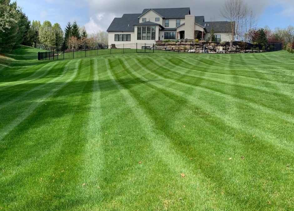 Building a Beautiful Lawn